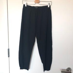 Aritzia Babaton dexter pants, size s, black